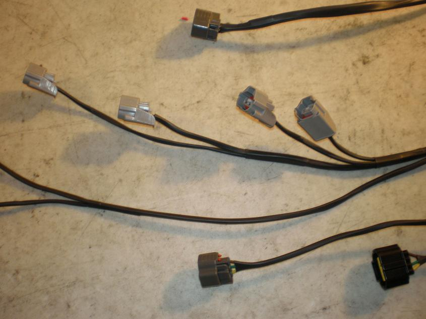 4age 20v harness  Sgte Wiring Harness on suspension harness, obd0 to obd1 conversion harness, fall protection harness, dog harness, oxygen sensor extension harness, pony harness, safety harness, maxi-seal harness, amp bypass harness, engine harness, alpine stereo harness, cable harness, electrical harness, pet harness, battery harness, nakamichi harness, radio harness,